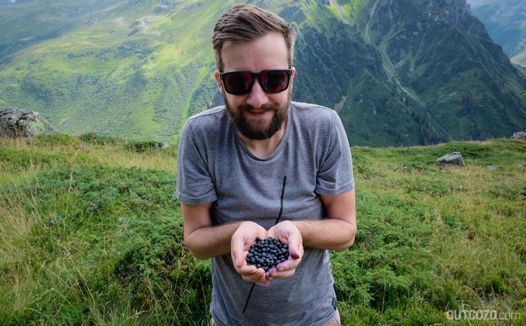 Martin Stiegler bei der Blaubeer-Ernte