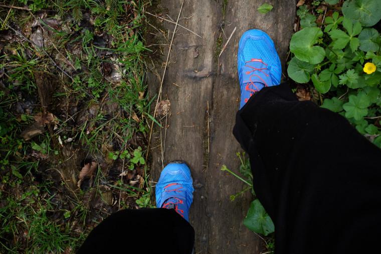Auf glattem, nassen Holz kommt der Dynafit Feline SL an seine Grenzen.
