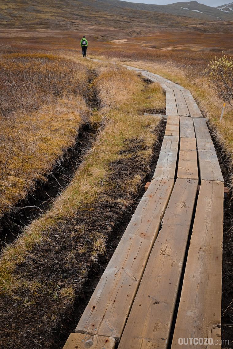 Skaftafell Mooslandschaft Holzweg