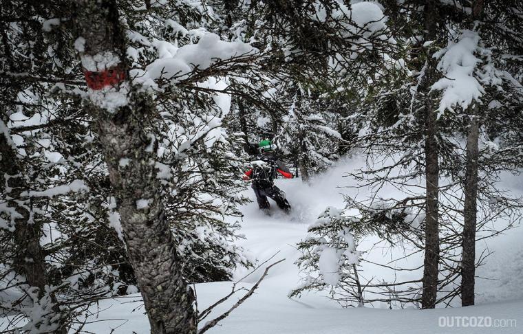 treerun wanderweg snowboard