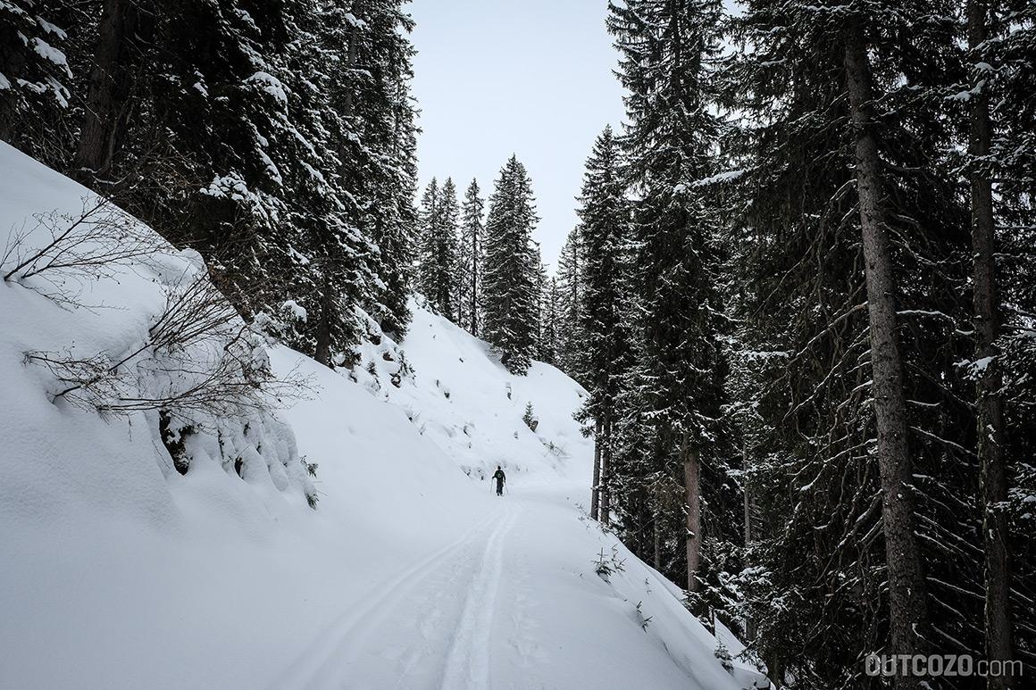 verschneiter wald skitour