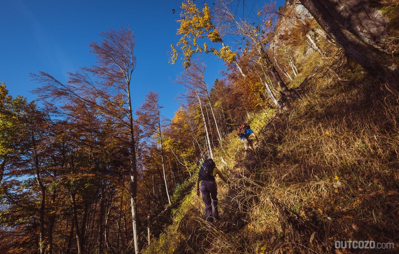 Herbstwald Kastenwand